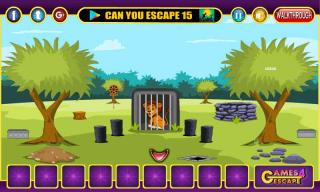Игра Cute Lion Rescue
