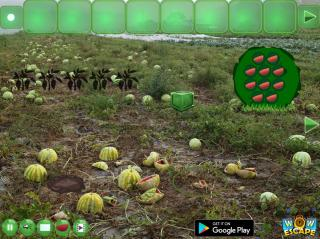 Игра Watermelon Land Escape