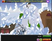 Игра Ice Cat Escape фото