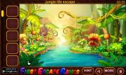 Игра Fantasy Jungle Boy Escape фото