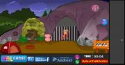 Игра Colorful Parrot Escape фото