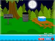 Amazing Escape the Forest на FlashRoom