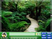 Mystic Rainforest на FlashRoom