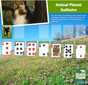 Animal Planet Solitaire
