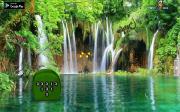 Игра Лес зелёных ящериц на FlashRoom