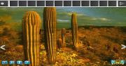 Cactus Desert Escape на FlashRoom