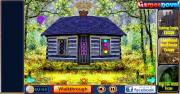 Игра Forest Resort Escape фото