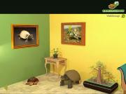 Turtle Attack на FlashRoom