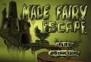 Male Fairy Escape на FlashRoom