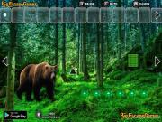 Лес медведей гризли на FlashRoom