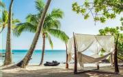 Игра Побег с райского пляжа на FlashRoom