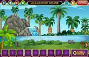 Игра Wild Ostrich Rescue на FlashRoom