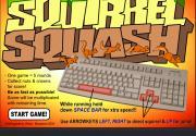 Squirrel Squash на FlashRoom