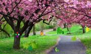 Парк влюбленных на FlashRoom