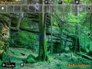 Лес зеленого камня на FlashRoom