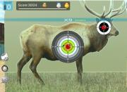 Охотник 3D на FlashRoom
