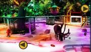 Найди кольцо в зоопарке на FlashRoom