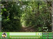 Sneaky Jungle на FlashRoom