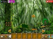 Спасение феи из леса на FlashRoom