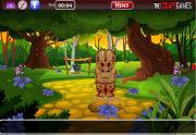 Игра Save The Fairy Girl фото