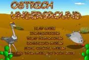 Ostrich underground на FlashRoom
