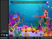 Submarine Escape на FlashRoom