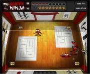 Sloppy Ninja - Fate на FlashRoom